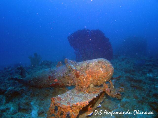 古宇利島の沖に眠る全長約100mの沈船USSエモンズを潜る