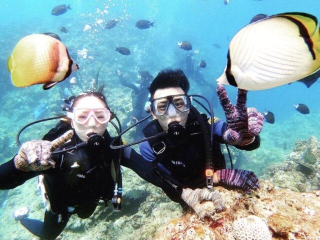 青の洞窟ダイビングで熱帯魚と遊ぶ