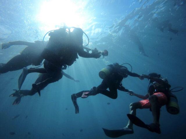 専属インストラクター付きで安心な体験ダイビング