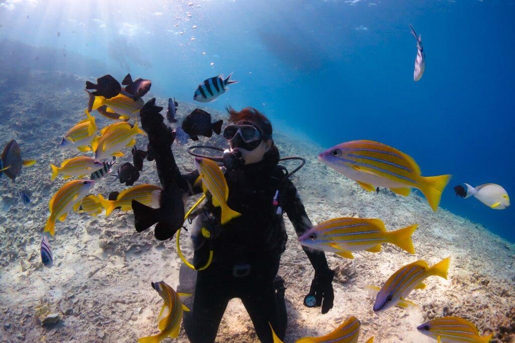 沖縄でダイビングを楽しむ女性