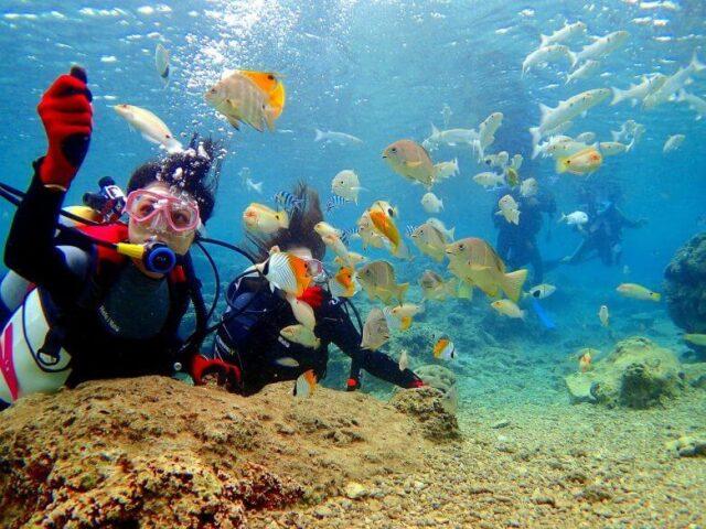 【恩納村】毎日5組限定!「青の洞窟」ボート体験ダイビング&パラセーリング(No.47)