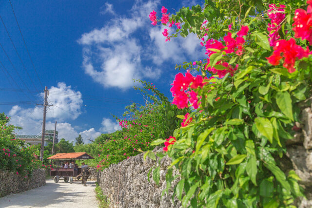竹富島 景観