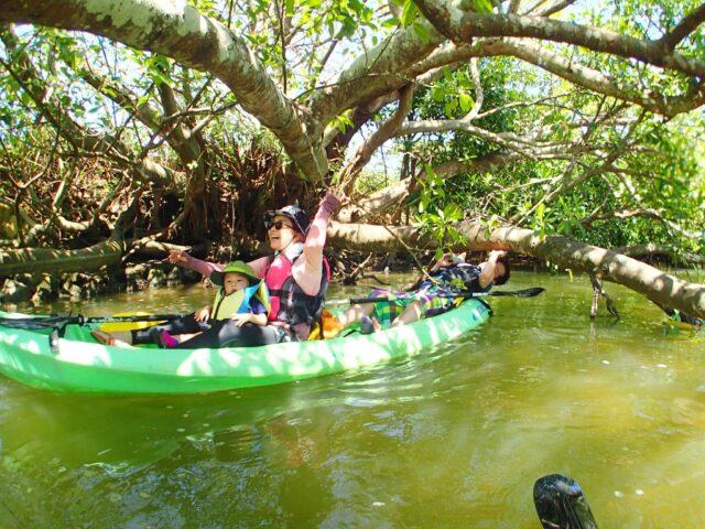 熱帯ジャングルマングローブカヤック探検